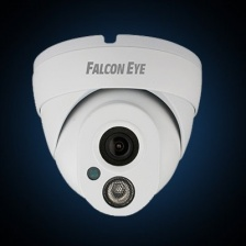 FE-IPC-DL100P (Falcon Eye)